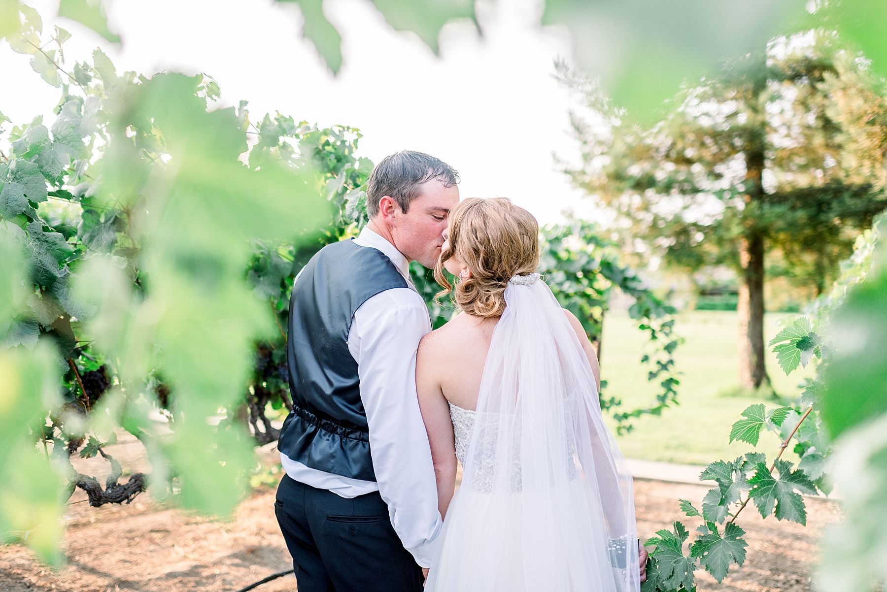 Wine and Roses Wedding - Wine and Roses Lodi Wedding Photographer - Sacramento Film Wedding Photographer - Ashley Baumgartner - Sacramento Luxury Wedding Photographer_0047.jpg