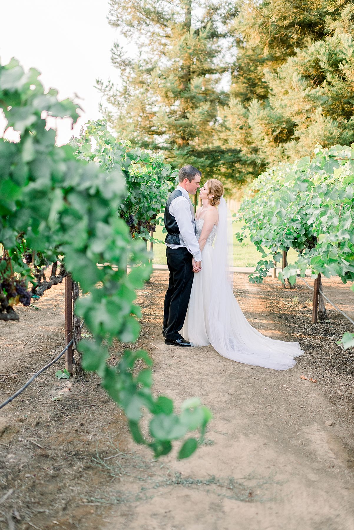 Wine and Roses Wedding - Wine and Roses Lodi Wedding Photographer - Sacramento Film Wedding Photographer - Ashley Baumgartner - Sacramento Luxury Wedding Photographer_0049.jpg