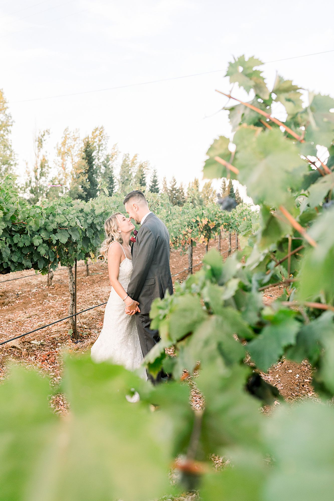 Avio Winery Wedding - Nataly and Eli - Winery Wedding - Amador Wedding Photographer - Suters Creek Wedding Photography_0063.jpg