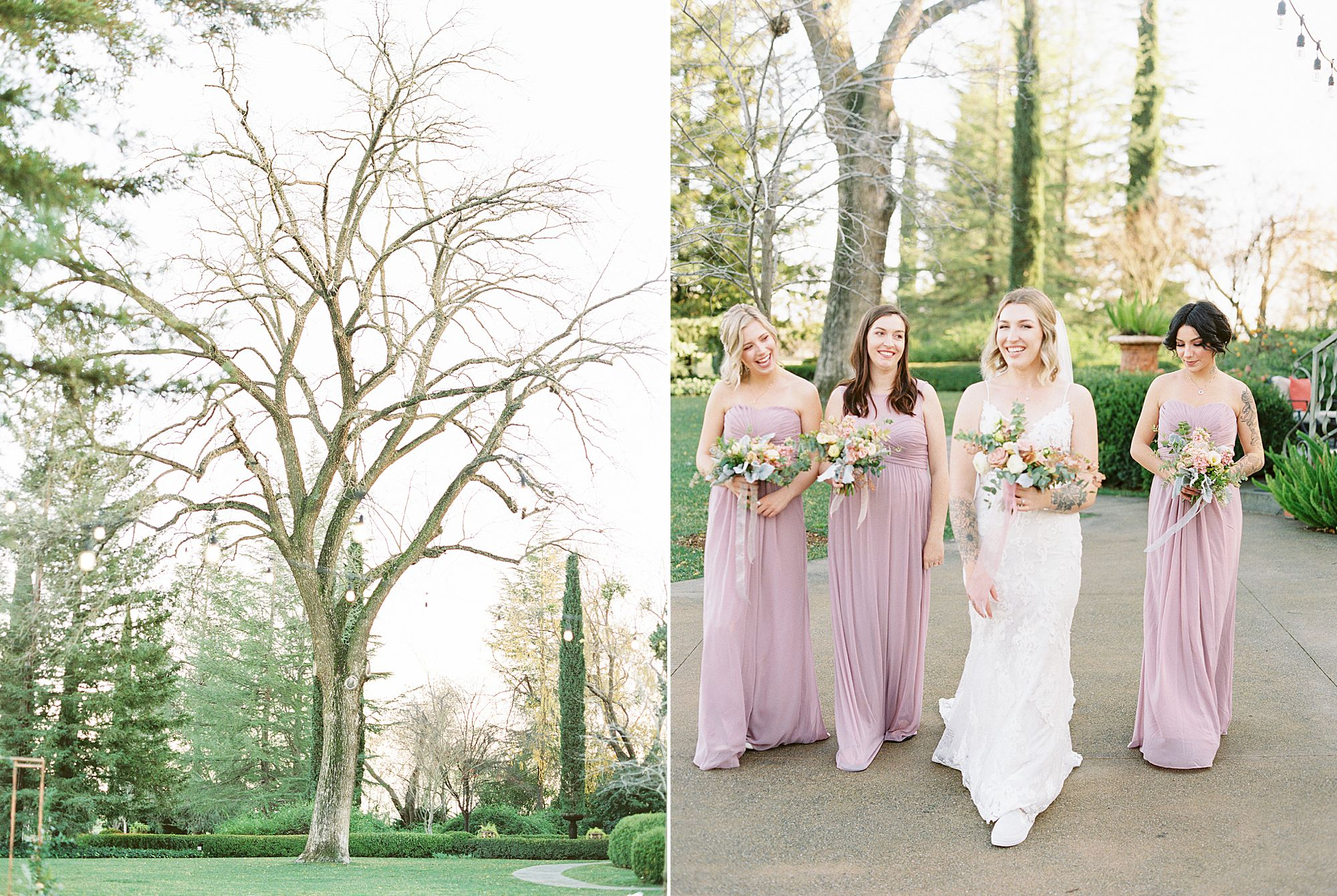 Inn at Park Winters Wedding - Lindsay and Shane - Ashley Baumgartner - Park Winters Wedding Photographer - Sacramento Wedding Photographer_0041.jpg