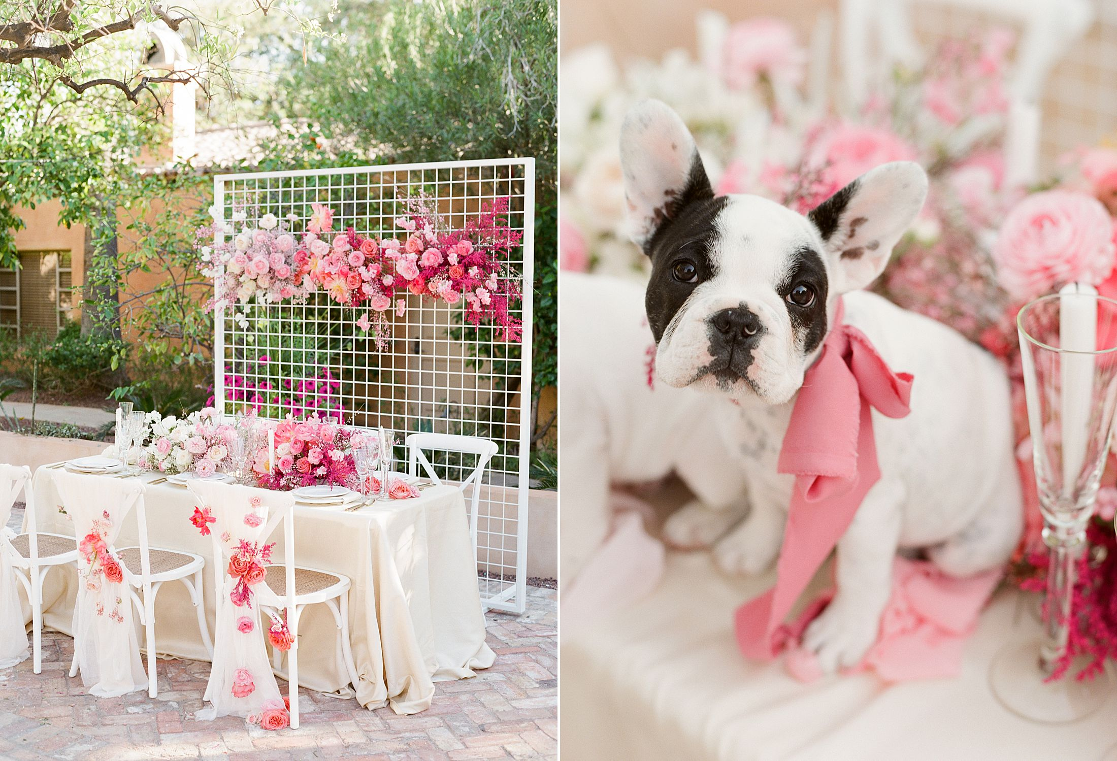 Pink Ombre Wedding Inspiration on Style Me Pretty - Royal Palms Wedding - Scottsdale Wedding - Ashley Baumgartner - Bloom and Blueprint - Wedding Puppies - Bulldog Puppies_0002.jpg