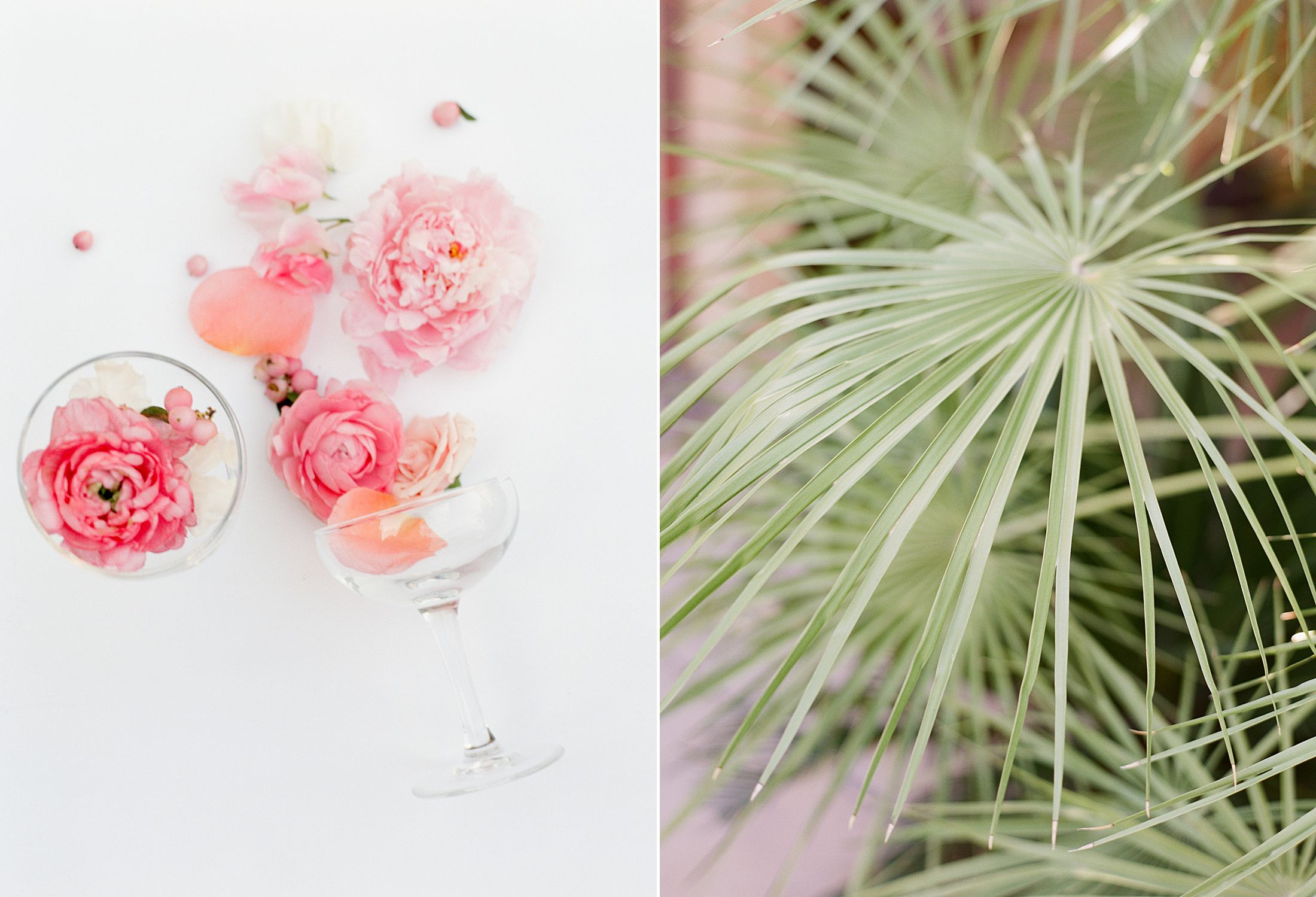 Pink Ombre Wedding Inspiration on Style Me Pretty - Royal Palms Wedding - Scottsdale Wedding - Ashley Baumgartner - Bloom and Blueprint - Wedding Puppies - Bulldog Puppies_0006.jpg