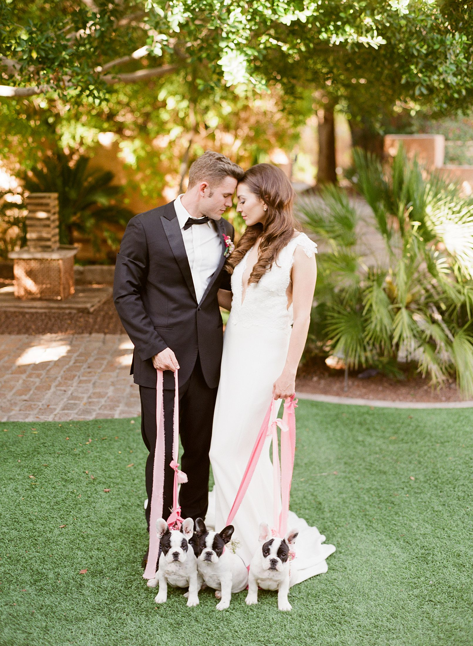 Pink Ombre Wedding Inspiration on Style Me Pretty - Royal Palms Wedding - Scottsdale Wedding - Ashley Baumgartner - Bloom and Blueprint - Wedding Puppies - Bulldog Puppies_0013.jpg