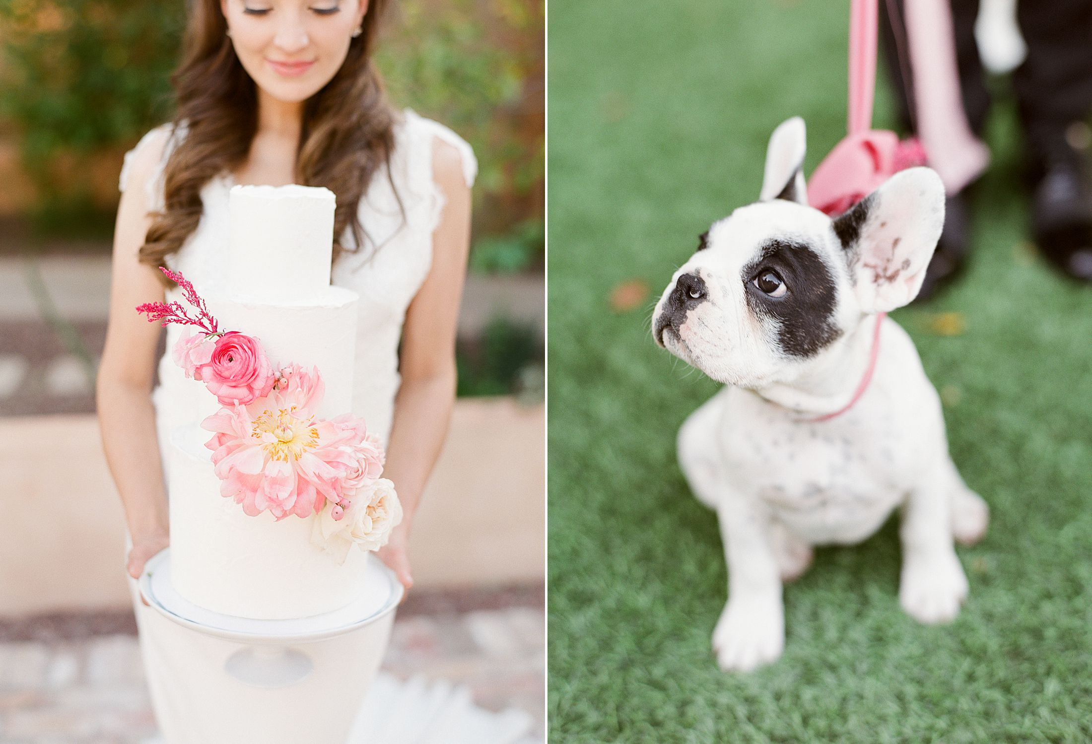 Pink Ombre Wedding Inspiration on Style Me Pretty - Royal Palms Wedding - Scottsdale Wedding - Ashley Baumgartner - Bloom and Blueprint - Wedding Puppies - Bulldog Puppies_0014.jpg