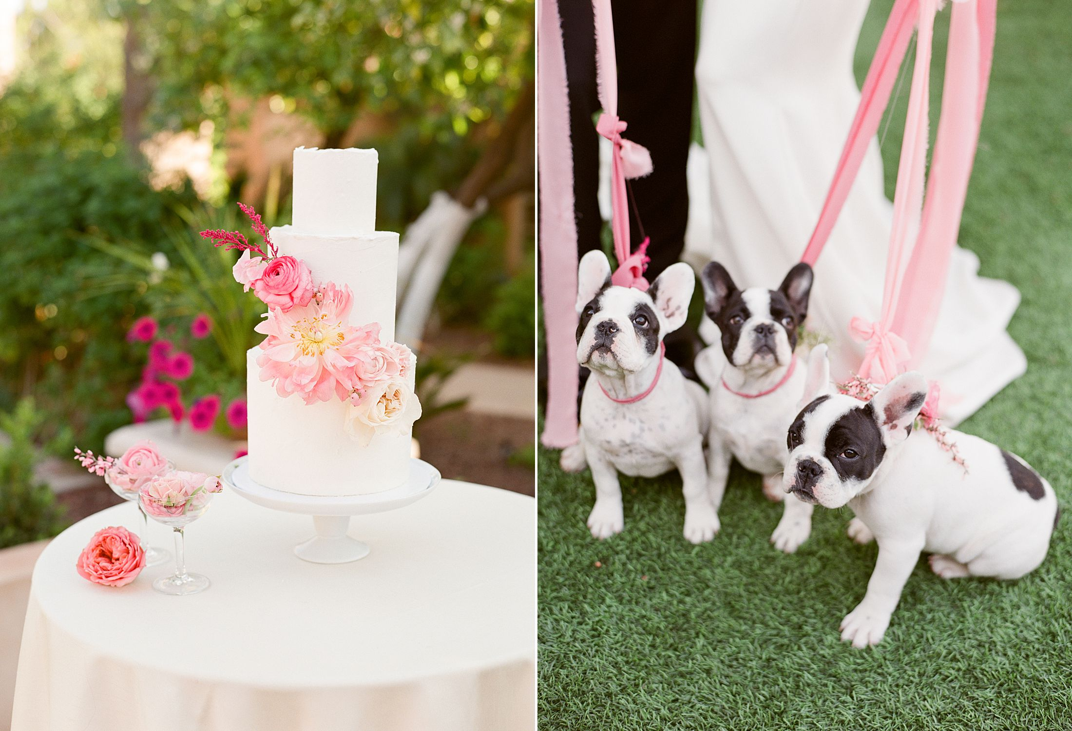 Pink Ombre Wedding Inspiration on Style Me Pretty - Royal Palms Wedding - Scottsdale Wedding - Ashley Baumgartner - Bloom and Blueprint - Wedding Puppies - Bulldog Puppies_0032.jpg