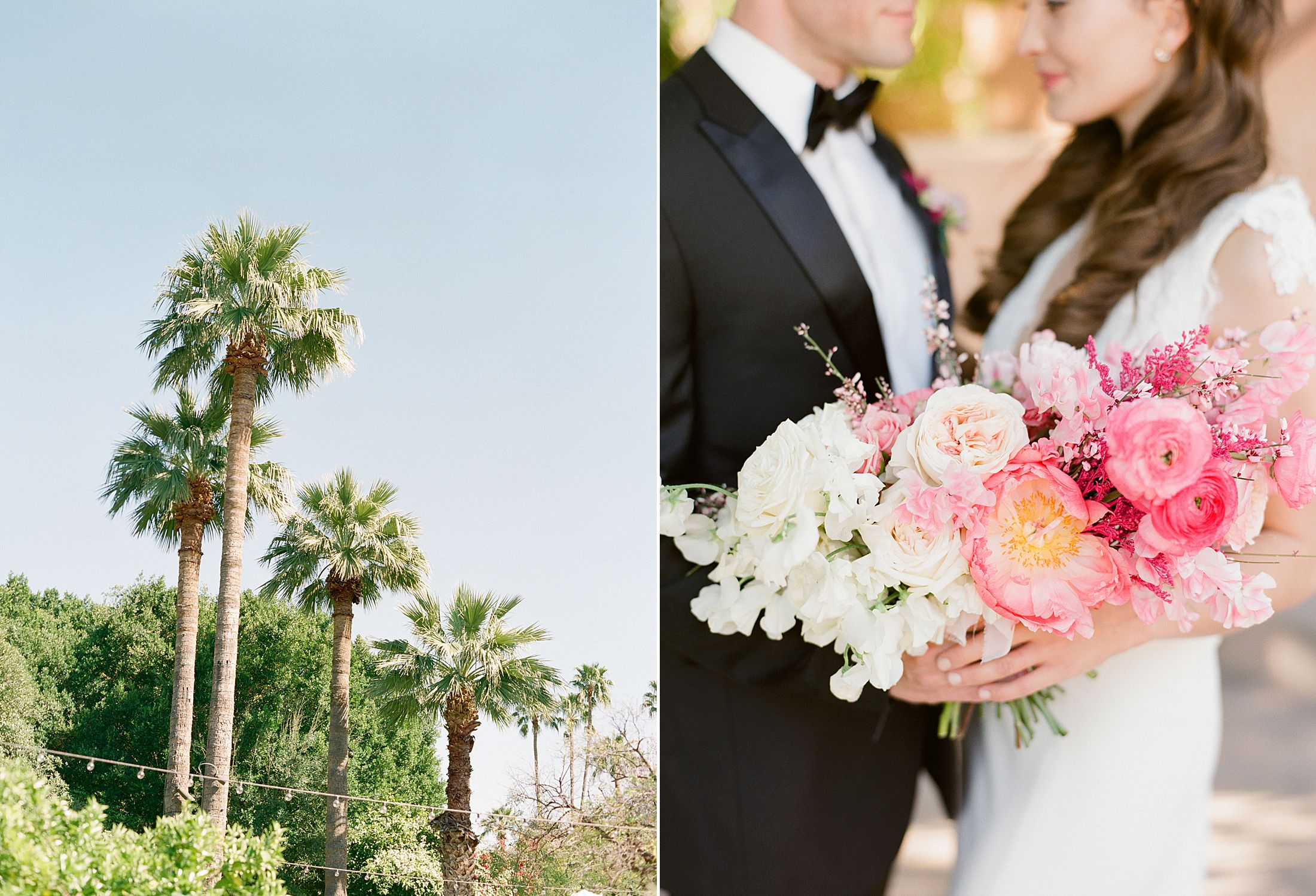Pink Ombre Wedding Inspiration on Style Me Pretty - Royal Palms Wedding - Scottsdale Wedding - Ashley Baumgartner - Bloom and Blueprint - Wedding Puppies - Bulldog Puppies_0038.jpg