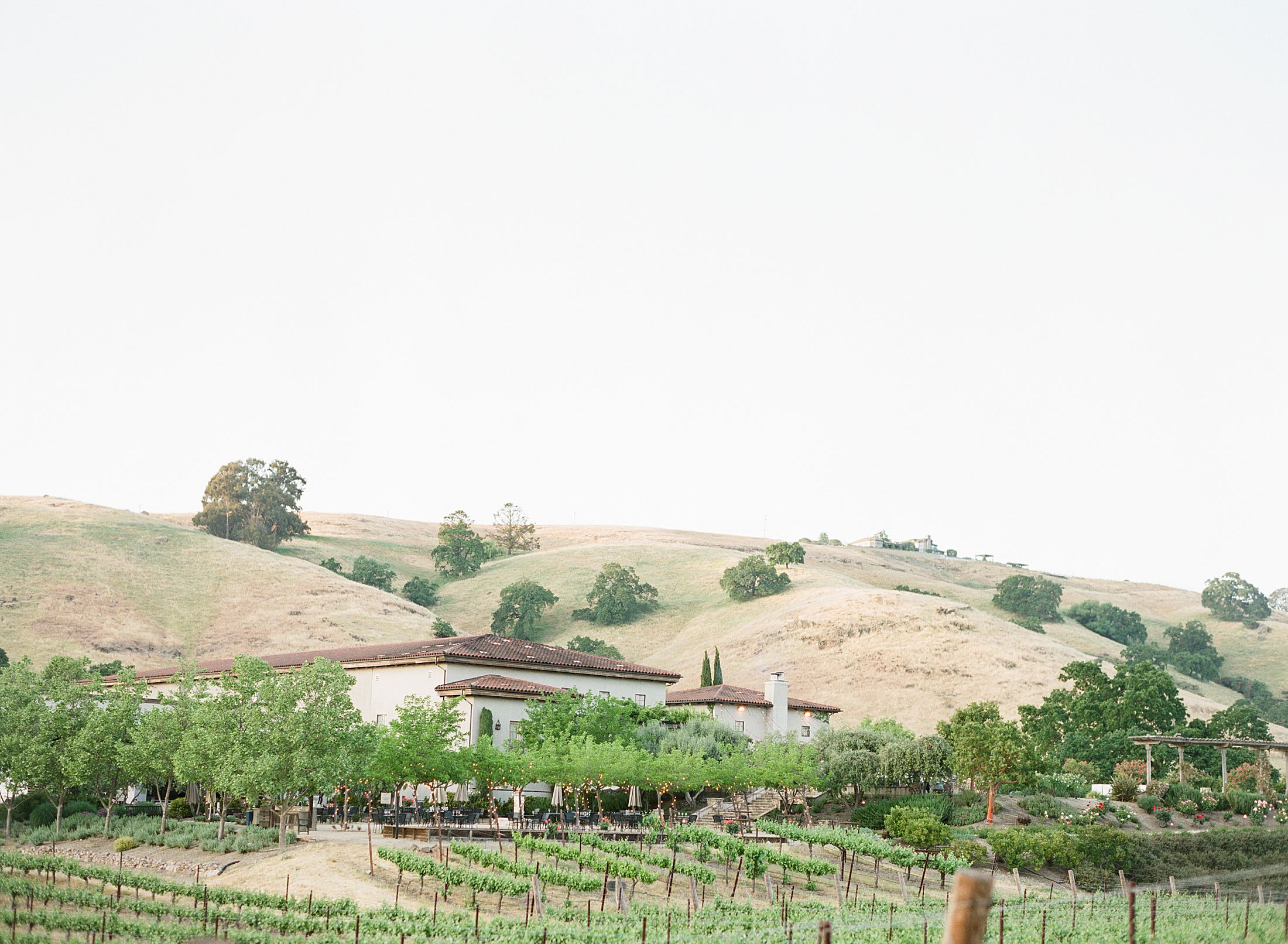 Clos LaChance Winery Wedding - Ashley Baumgartner - Kat & Kurt - Morgan Hill Wedding - Winery Wedding - Bay Area Photographer - Sacramento Wedding Photographer_0001.jpg