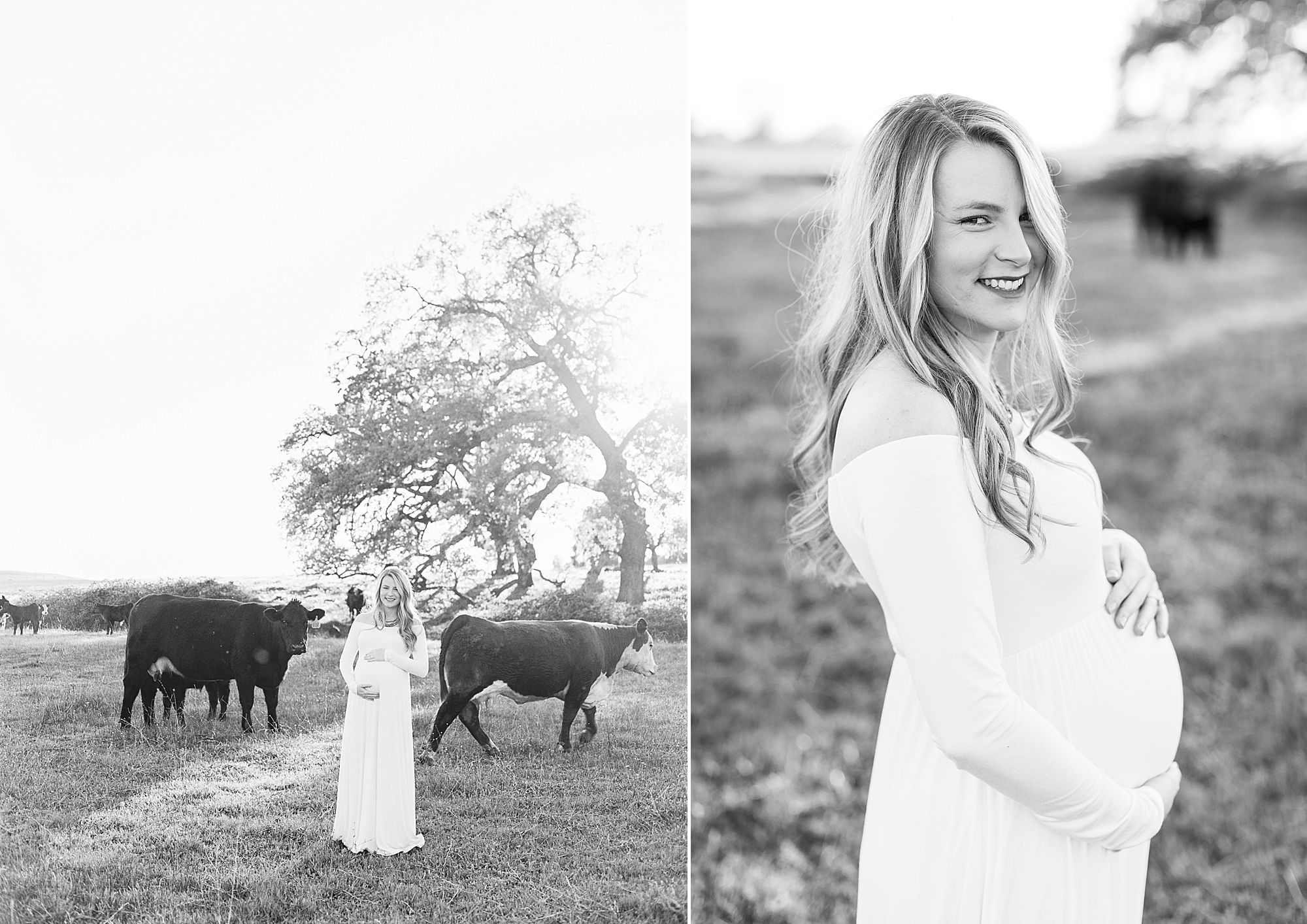 Sheridan Maternity Session - Lexie and Nick - Sacramento Maternity Photos by Ashley Baumgartner - Farmland, 4H Maternity with Cows_0018.jpg
