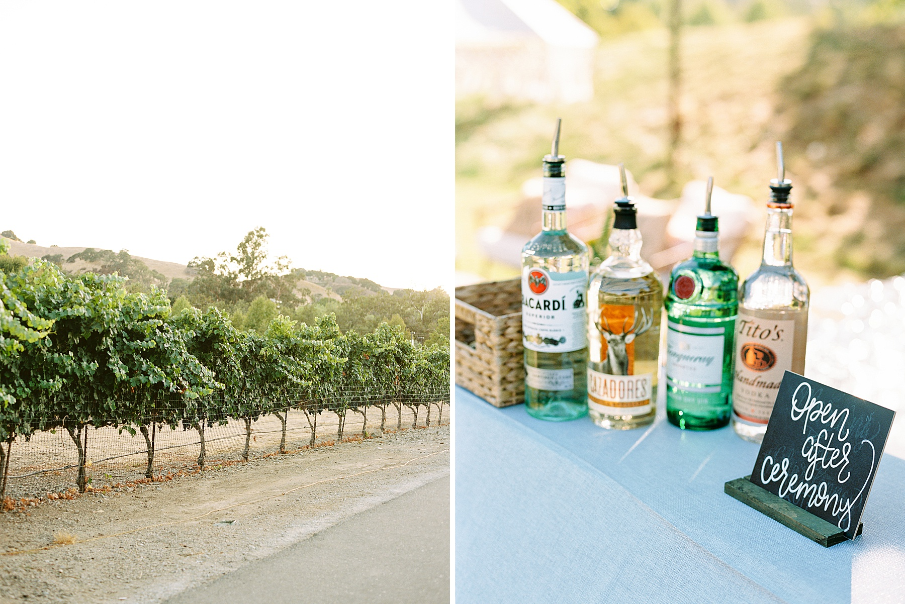 Wente Wedding with A Tropical Color Palette - Ashley & Mike - Featured on Inspired by This - Ashley Baumgartner_0003.jpg