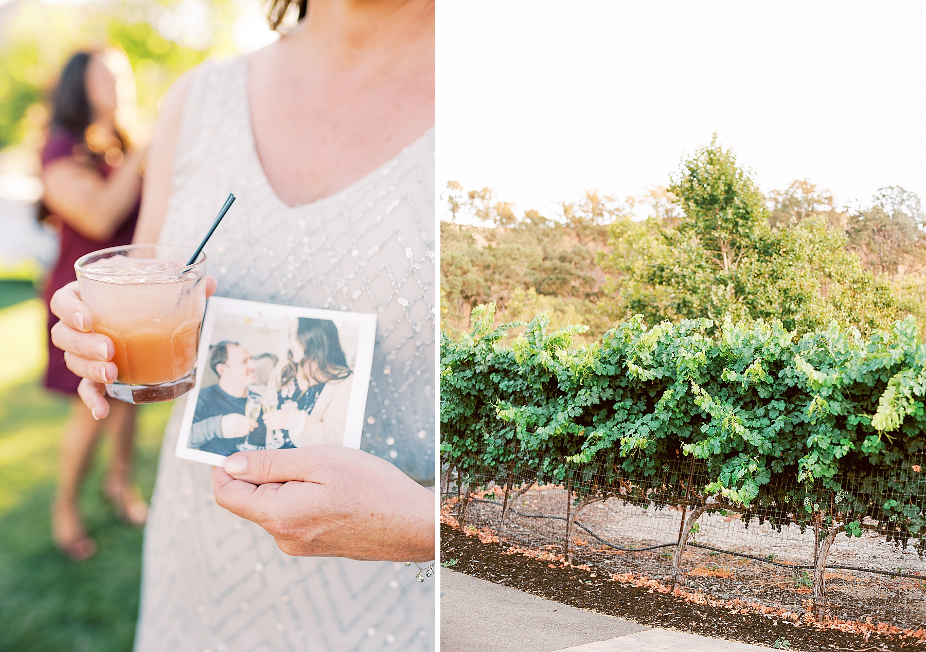 Wente Wedding with A Tropical Color Palette - Ashley & Mike - Featured on Inspired by This - Ashley Baumgartner_0009.jpg