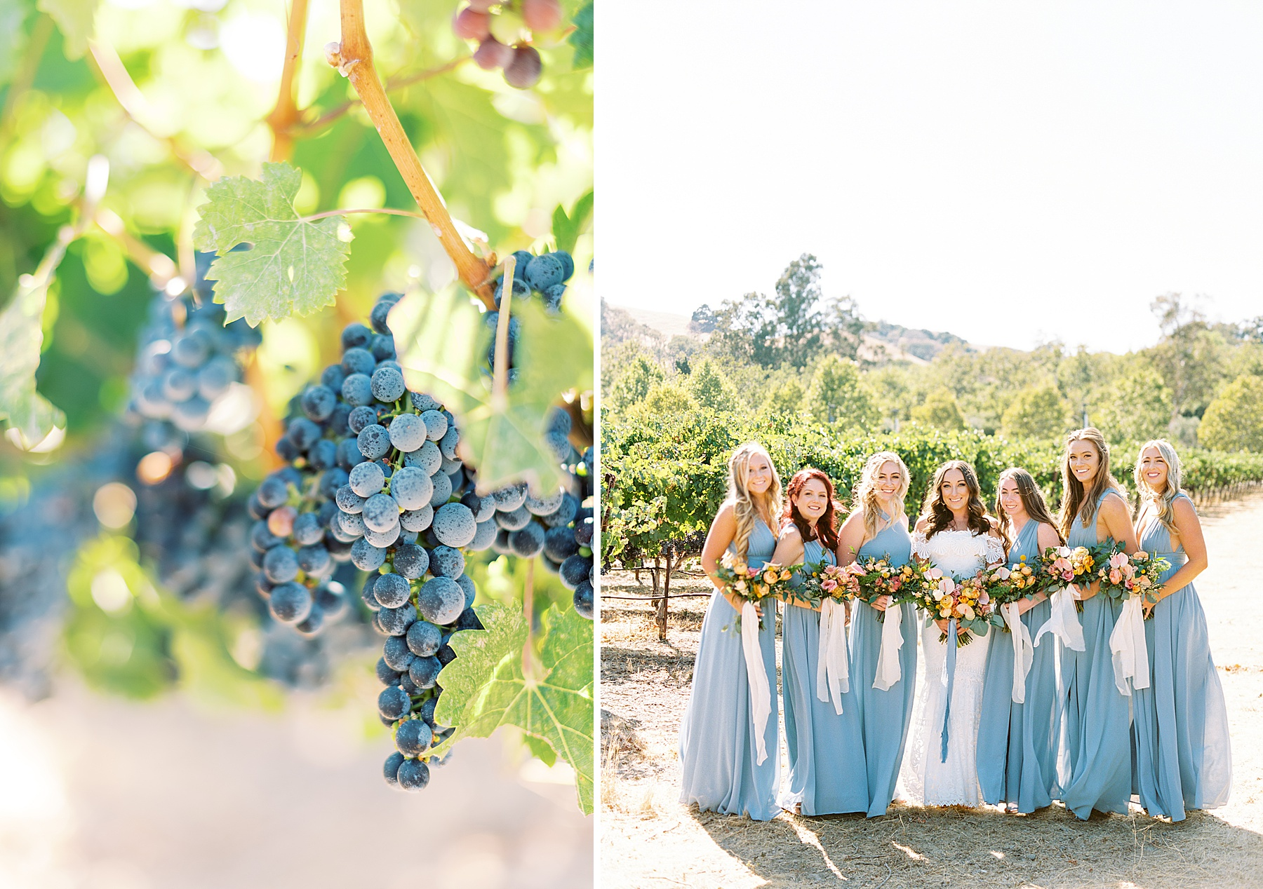 Wente Wedding with A Tropical Color Palette - Ashley & Mike - Featured on Inspired by This - Ashley Baumgartner_0019.jpg