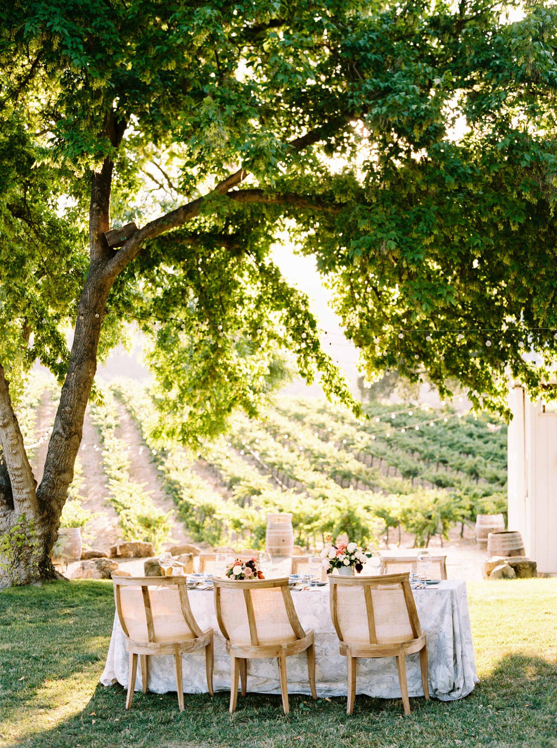HammerSky Wedding Inspiration Featured on Hey Wedding Lady with Vanessa Noel Events - Ashley Baumgartner - SLO Wedding Photographer_0002