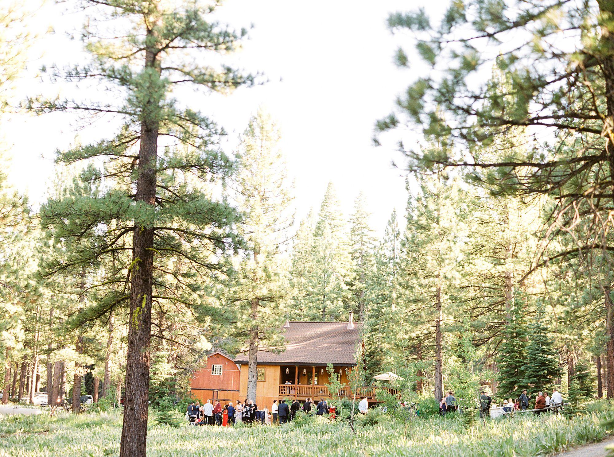 MITCHELLS MOUNTAIN MEADOWS Wedding - Ash Baumgartner - Phallina and Matt - Sierraville Wedding - Tahoe Wedding Photography_0007.jpg